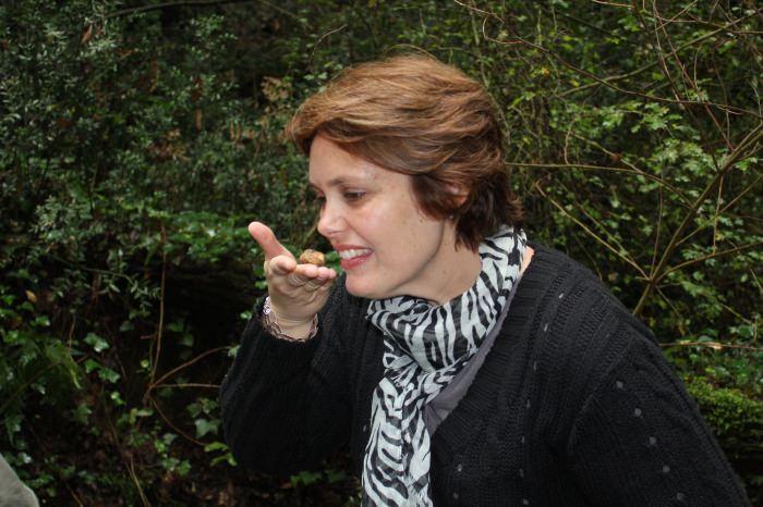 Caça às Trufas na Toscana, Experiência Fantástica