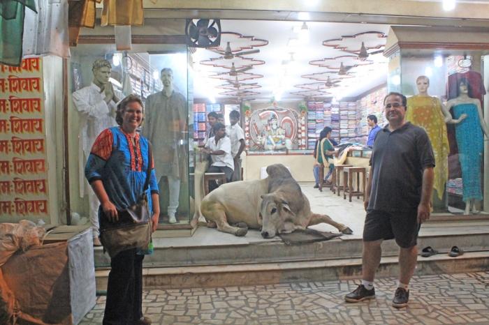 Ao sair da Cerimônia...caminhando pelas ruas, não pude deixar de registrar o quanto a vaca é um animal sagrado na índia ...